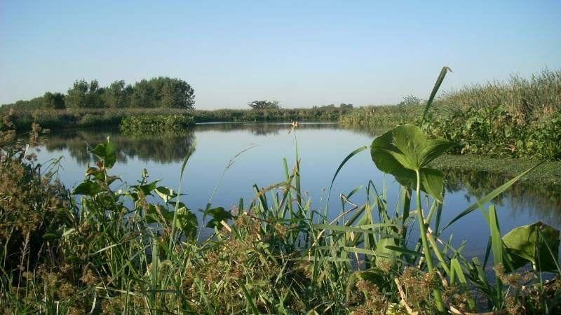 Piden que las Lagunas de Rocha sean una Reserva Natural Integral