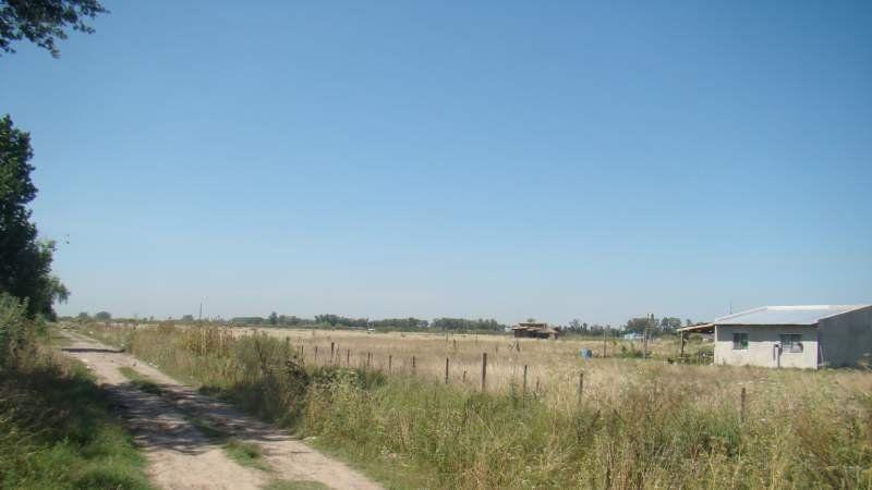 Estos son los terrenos que intentaron usurpar en Los Naranjos