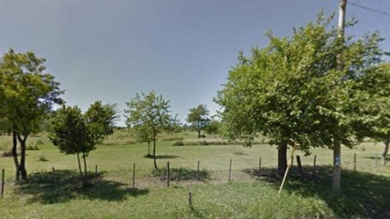 Conmoción en Don Orione: Un hombre se ahorcó en la rama de un árbol