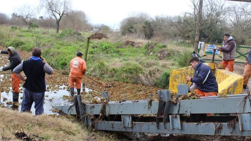 """Implementan un nuevo método para limpiar la laguna de San Vicente: """"casero y barato"""