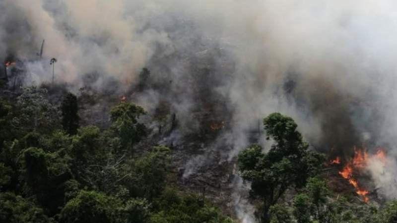 El Amazonas en llamas: hubo 72 mil focos de incendio en lo que va del año