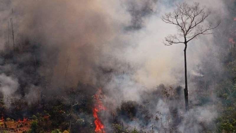 Unos 400 bomberos argentinos se ofrecieron para combatir los incendios en el Amazonas