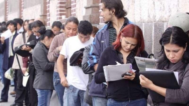Anses tiene un seguro de desempleo: Cómo se accede y quiénes pueden cobrarlo
