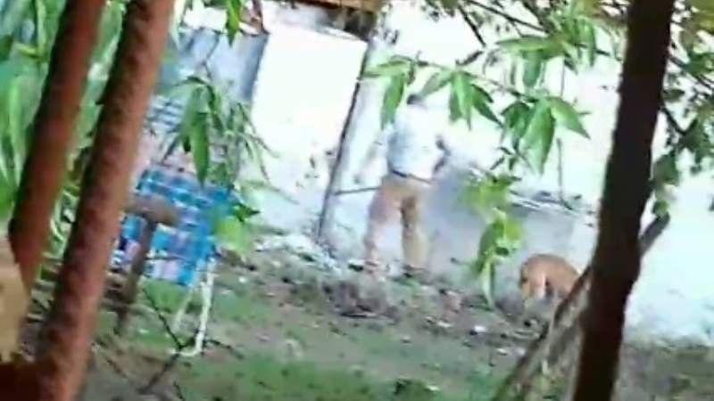 Denuncian a un vecino que maltrata salvajemente a su perro