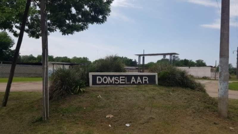 Tras los cajeros: qué hay y qué le falta al pueblo de Domselaar