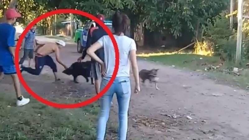 Se peleaban entre vecinos y terminaron acuchillando a un perro
