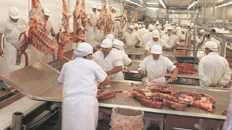 Controlarán a los frigoríficos por el aumento de la carne