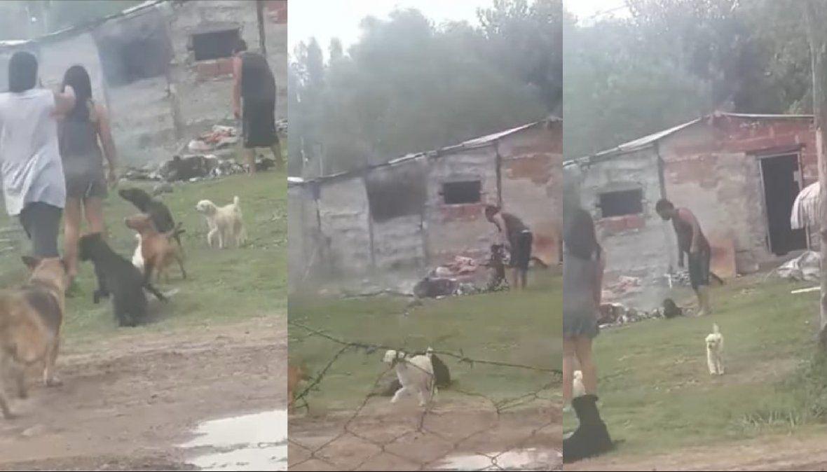 Indignación en Alejandro Korn con un vecino que quiso prender fuego a su perro.