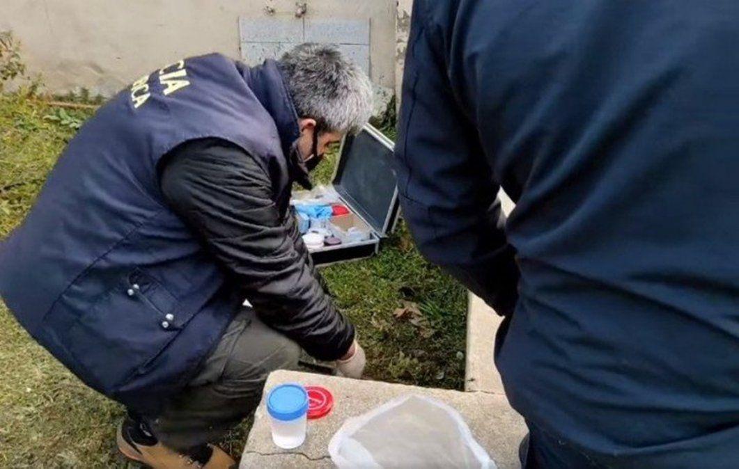 Insólito: un jardinero encontró un pene en la casa a la que fue a cortar el pasto