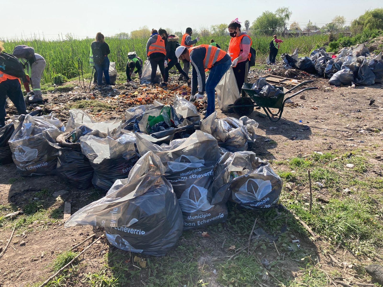 Trabajos de limpieza y reciclado en la Laguna de Rocha