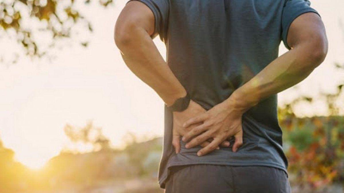 Qué puede insagmar la educación sobre Dolor de espalda alta