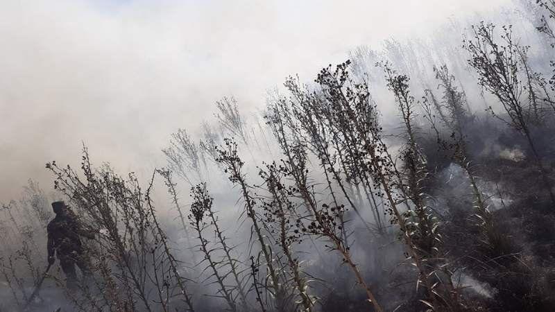 Estancia de Ezeiza sufrió un gran incendio de pastizales