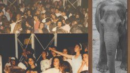 a 30 anos de la historica fiesta del elefante en san vicente: el recuerdo de los protagonistas