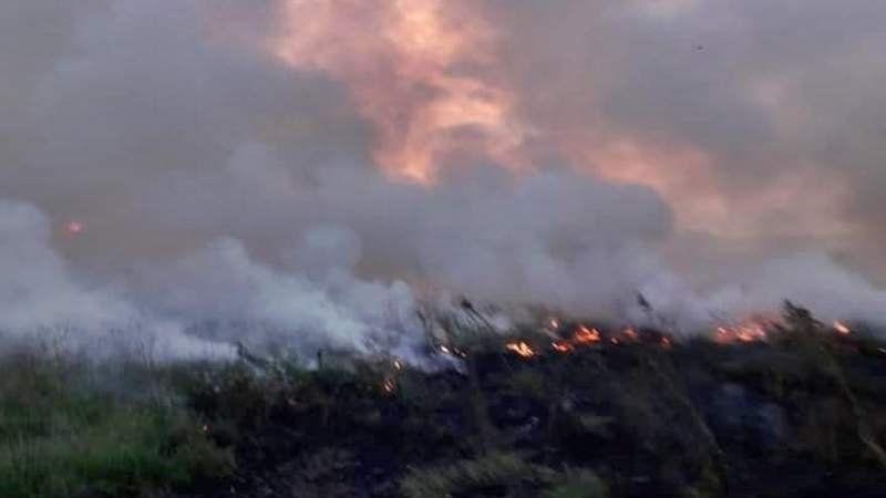 Importante incendio en un predio de la Reserva Santa Catalina