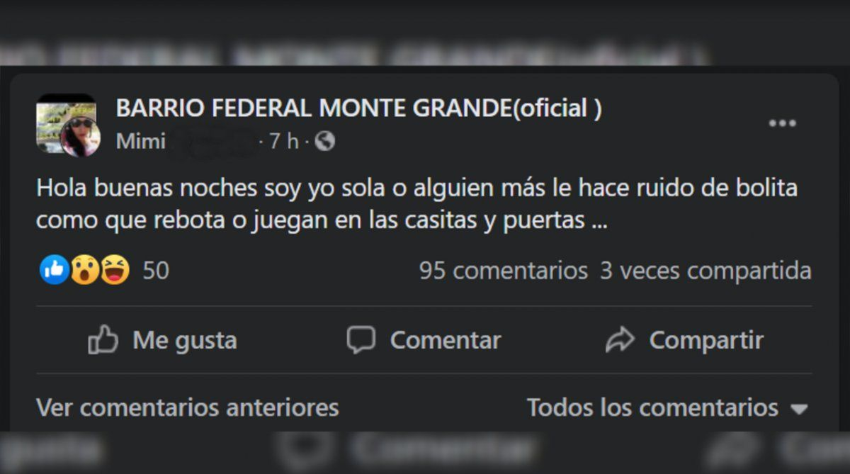 """En redes sociales. Así empezó el intercambio en el grupo """"Barrio Federal Monte Grande (oficial)""""."""