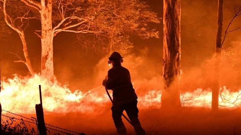 Incendios en Australia: 23 personas y 480 millones de animales murieron