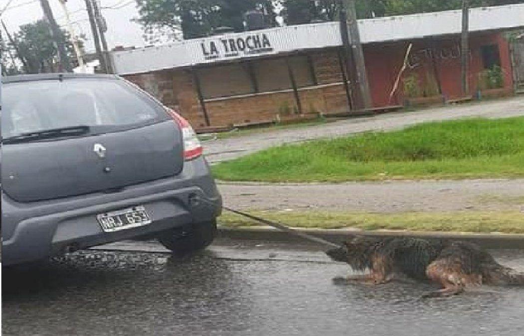 Guernica: arrastró a un perro atado al auto y lo detuvieron