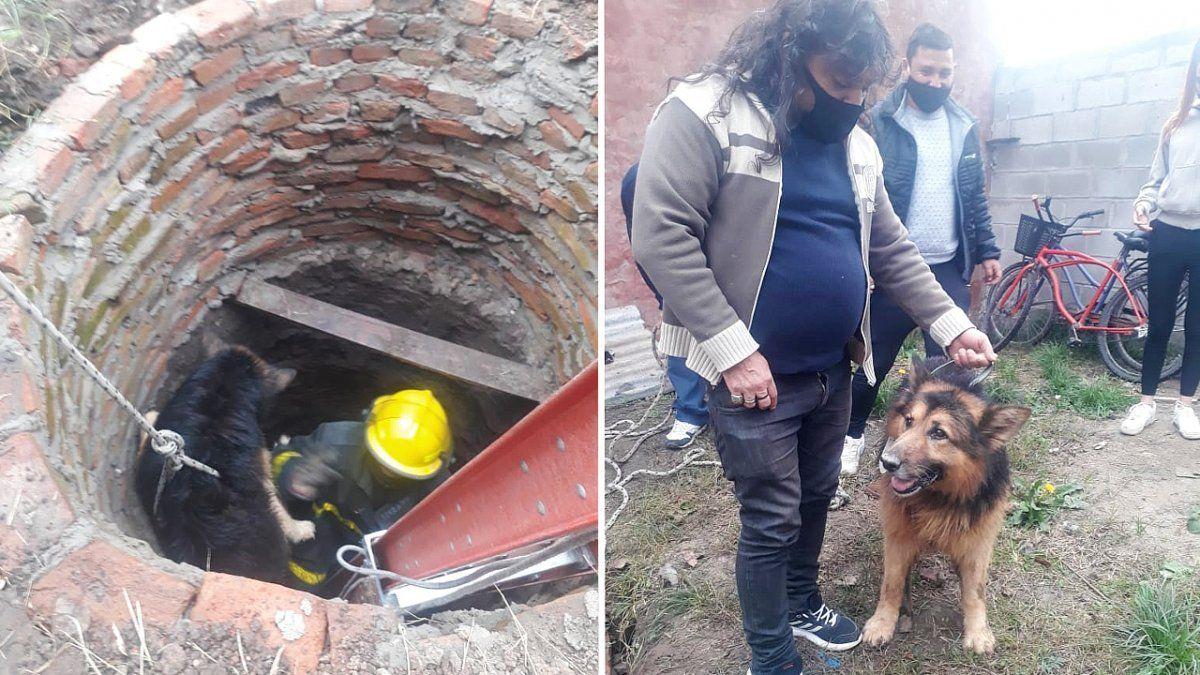 Un perro cayó a un pozo y fue rescatado por los bomberos