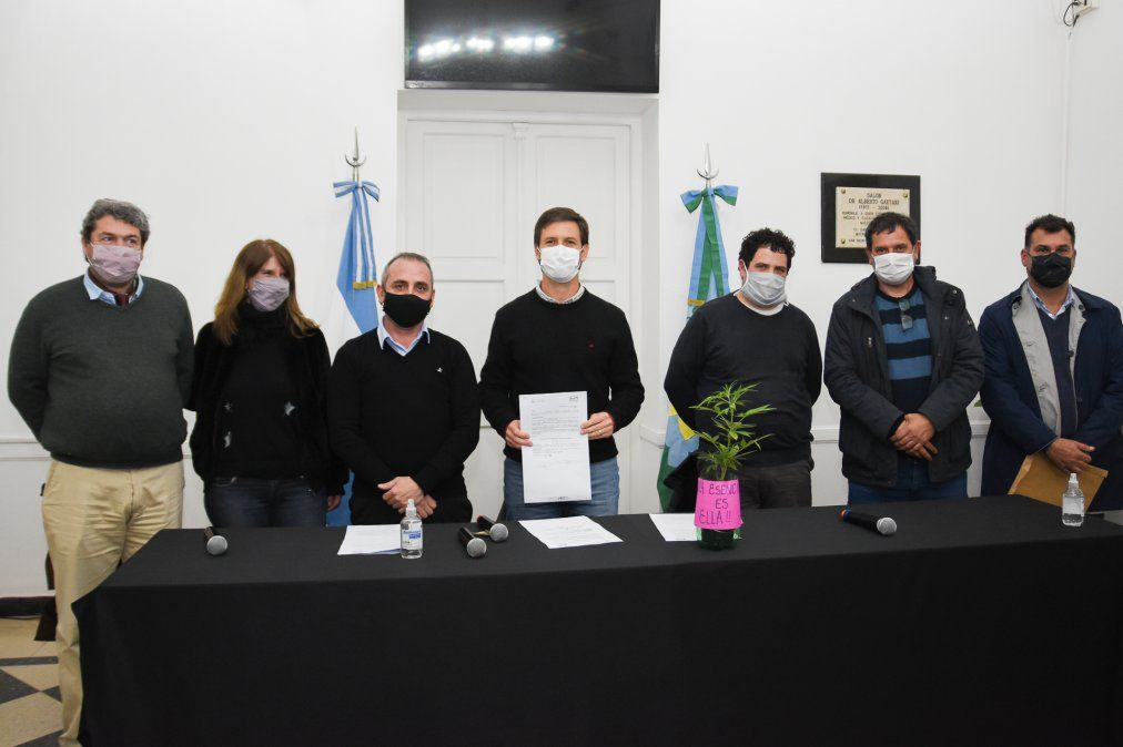 Presentaron el Programa de Cannabis Medicinal en San Vicente: cómo funciona